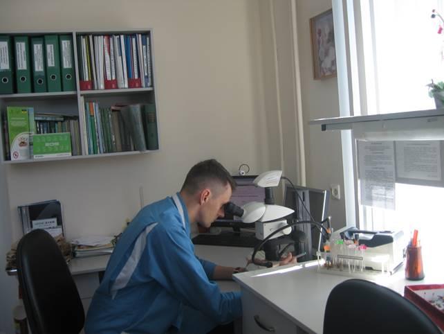 Проведення ентомологічного аналізу по ідентифікації короїдів (ентомолог Винокуров О. О.)